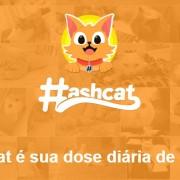 Hashcat: O Instagram para quem gosta de gatos