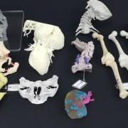 Impressoras 3D: elas mudarão o conceito econômico do mundo?