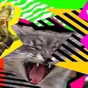 Artimanha do YouTube transforma vídeos em Gifs