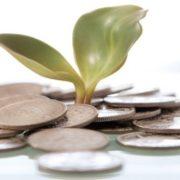 Saiba como fugir das fraudes nos empréstimos online