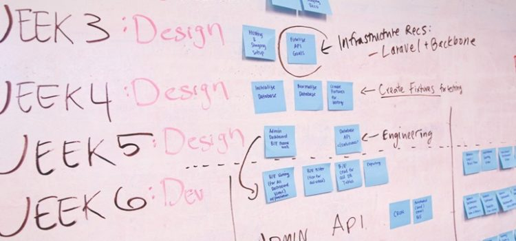 Veja 5 startups que misturam inovação com responsabilidade social