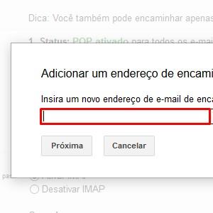 4. No campo em branco digite o endereço de e-mail que você quer que receba cópias das mensagens. Depois, clique em Próxima.