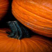 Se inspire para o Halloween com as ideias que estão bombando no Pinterest
