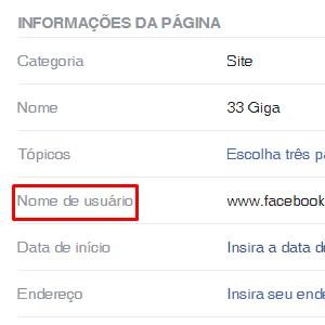 3 - Nas informações da página, procure por Nome de usuário.