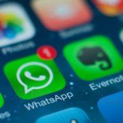 Infográfico: brasileiros consideram o WhatsApp o aplicativo de mensagens mais confiável