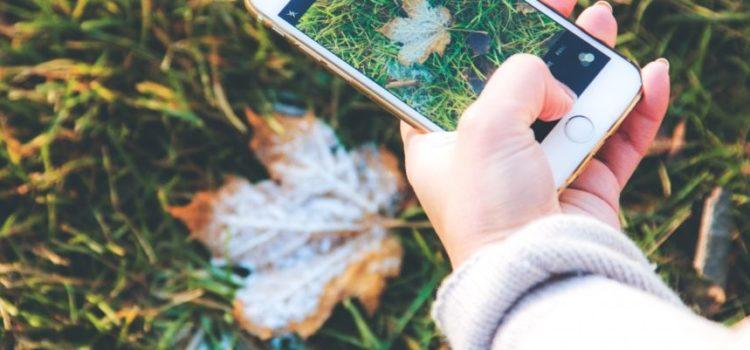 Vídeo: Quer editar fotos no celular? Confira 5 aplicativos com essa função