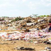 Ilha das Flores é eleito melhor curta brasileiro; assista