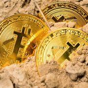 Bitcoin pode se tornar ouro, petróleo ou dinheiro. Você sabia?
